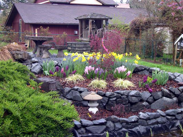 Landscape installation windy point services inc for Hearty low maintenance plants
